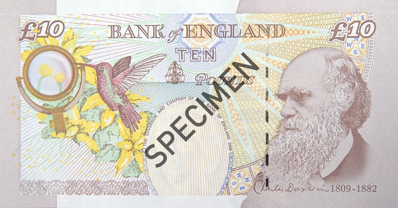 Back of paper ten pound note